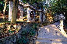 万松山公园对每个瑞安的人来说都非常的熟悉,每天清晨都会有很多人上山来打水或者是早锻炼爬山,久而久之这