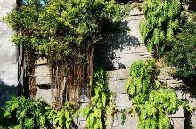 湖光岩风景区位于湛江市区西南部约19公里处,是著名的湖光岩火山口风景区。湖光岩大约形成于20万年前,