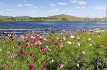 五彩山是乌兰布统观赏秋色的景点,所谓五彩,是指秋季到来后,各种树木都产生色变,枫树的红,白桦树的黄,