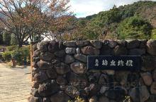 别府地狱温泉 通票七个景点,一一打卡 算是几个温泉景点里最大的一个泉眼了,也是最值得一看的。PS:据