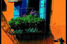 威尼斯的外岛Burano彩色岛,真地到处是彩色的房子,岛上的窗户都种满了幸福。  水上城市威尼斯有三