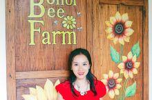 菲律宾薄荷岛|打卡小清新的蜜蜂农场  菲律宾薄荷岛有一个以蜜蜂为主题的农场,名为蜜蜂农场(Bohol