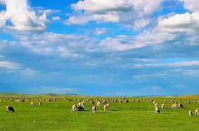 风吹草地见牛羊,喜欢这样的美景,但是因为 乌兰巴托·蒙古  现在的情况的关系,只能静静的呆在这里去怀