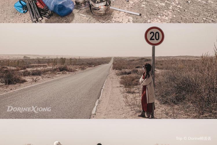 毛烏素沙漠2