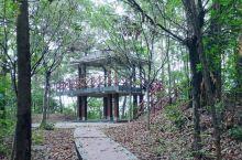 七星岗公园以地名七星岗命名,位于番禺区南村镇辖地,距番禺城区市桥约7公里,距南村镇中心2公里。该山岗