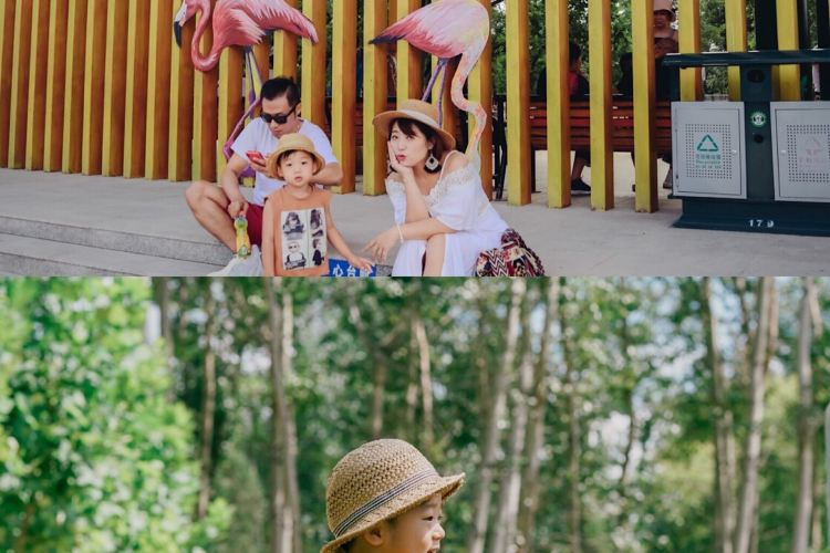 Qinhuangdao Wildlife Park3