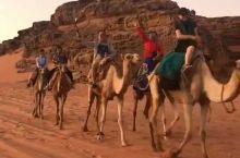 约旦瓦地伦玫瑰色沙漠单峰驼🐪队