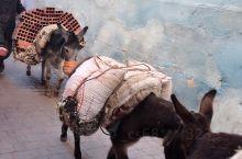 今天,来到穿越千年的世遗古城,菲斯,2800年历史,伊斯兰教圣地,摩洛哥人心中的骄傲,在这里,时间仿