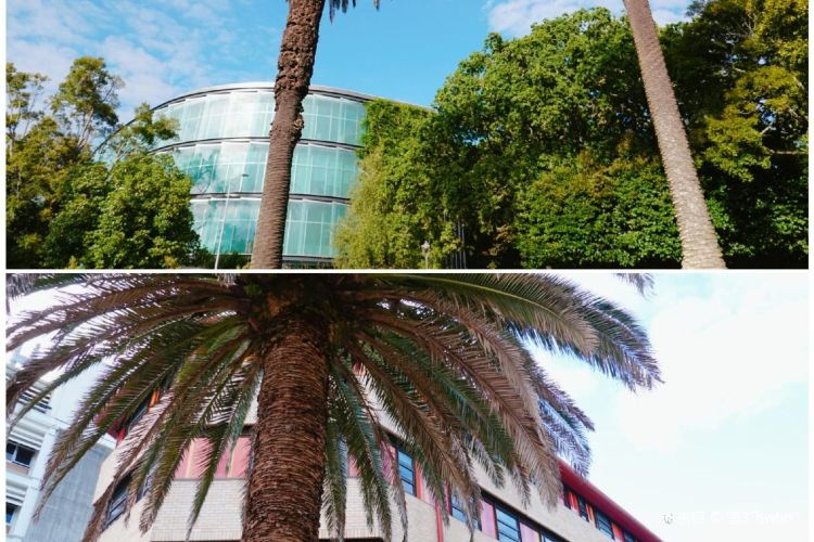 The University of Auckland4