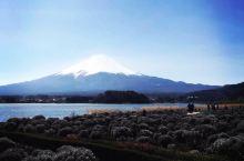 冬季的富士山,白色的雪顶在碧蓝的天空下闪烁着耀眼的光。拍到这么美的富士山实属不易,等待着成片的云从天