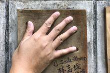 巧遇台湾猕猴 今天行程日月潭夫妻树阿里山 还有第一張照片的林志玲 今天行程滿足了 台湾大陆两岸一家亲