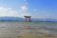 严岛神社,海水超凉