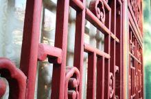 喜欢北京的冬天  空气干冷 凛冽的北风 红色的宫墙 冒着热气的炒肝  东来顺的铜火锅 南锣鼓巷的人来