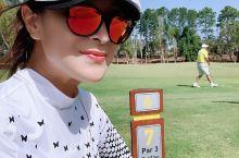 """阳光正好,微风不燥。 今日份皇家松林高尔夫打卡。今日我是追""""沙""""的人!""""沙皇""""非我莫属"""