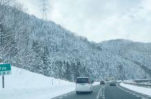 冬天 和亲爱的侄子一起来了日本#山形县和#宫城县的藏王山滑雪 小朋友是开心疯了 滑雪道具有租借店 非