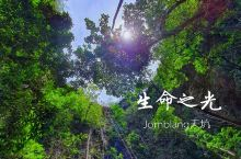 生命之光--- 日惹·日惹特区  小众景点 Jomblang Cave  岜朗天坑保姆级探险攻略