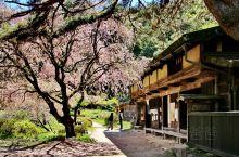 马笼宿(日语:馬籠宿/まごめじゅく Magome-juku)是一位于日本岐阜县中津川市的日本古驿道宿