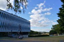 怀卡托大学校园