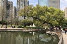 城區的公園如此的古色古香,真的讓人放鬆心情