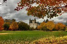 千万别跟渥太华比谁秋天更美!就算是没有蓝天和阳光的阴雨天,这里也是最美的秋啊……