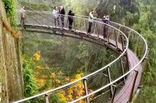 来温哥华必打卡的网红景点:卡皮拉诺吊桥