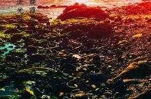 走近刘公岛---聆听百年之前甲午海战的故事   刘公岛,位于威海湾东入口,距市区2.1海里,乘游船1