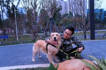 【用心种草,绝对小众|宠物世界】 深圳首个宠物社区公园,去年才开放的,喜欢萌宠的是万不可以错过的。