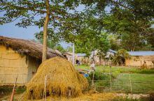 位于尼泊尔奇特旺国家森林公园里的塔奴村庄,是一个古老的村落,一般跟团游的行程安排中都会有这么一站,不