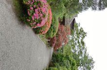 去过了位于金泽的兼六园,冈山的后乐园。今年夏天趁来东京之机,抽空逛了一下位于水户的偕乐园。虽然同为日