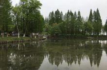 湘湖,春。