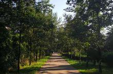 西部兰花生态园,避暑胜地,一个悠闲少人的地方,逃离喧嚣的城市,体验一种安静详和地生活,增长知识的同时