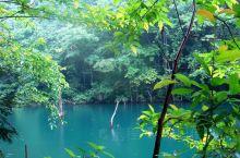"""遂昌之旅:千佛山  百度一下""""千佛山"""",一下跳出来好几个,最著名的应该是河北的千佛山,其实遂昌的这个"""
