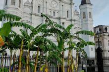 法国区的小街道、教堂、有轨电车与密西西比河半日游,和本地美食