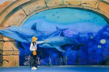 海洋馆里不一样的打卡照 可能很多人到了海洋馆第一反应就是拍摄一些海底隧道或者和水肿鱼儿互动的剪影照片