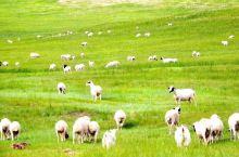 内蒙古呼伦贝尔大草原自驾游 亲子游攻略  住在南方的朋友一定要去看看什么才是正真的大草原,一去便难忘