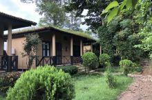 chitwan国家森林公园