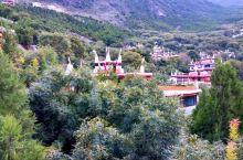 赶到丹巴甲居藏寨,已近日落时分。见过江南古村落,也去过北国边塞村镇,然而这里的村寨却是如此清新而古朴