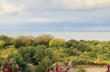 克莱佩达的库尔斯沙嘴国家公园。开车30分钟左右来到了车渡口,购买了12.5欧的船票后开上了渡船,6分