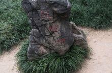 景区有4个景点,白园、香山寺、东山石窟、西山石窟。票价成人90,70周岁以上免门票。好多佛像被破坏了