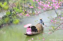 酉阳,渝东南边陲的一个少数民族自治县!世界上有两个挑花源,一个在您心中,一个在重庆酉阳。一场为期天的