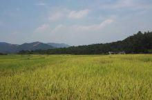 安徽白茅岭农场