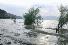 抚仙湖的水