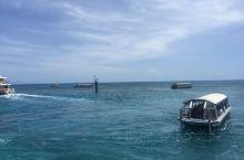 澳大利亚,来凯恩斯度假,乘坐游船一个小时抵达绿岛,清澈见底的海水,湛蓝的天空,可以浮潜和游泳,还可以