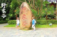 云南美景推荐——西双版纳野象谷 西双版纳野象谷距景洪市22公里,是中国首家以动物保护和环境保护为主题