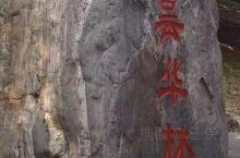 昙华林  昙华林,位于湖北省武汉市武昌区西部,毗邻湖北中医药大学武昌校区,地处城墙内的花园山北麓与螃