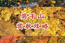 莫干山赏秋攻略|避开人海的小众打卡圣地  莫干山的秋季最美,温度适宜,人也较小,最适合度假 避开人挤