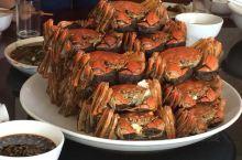 又到了可以吃阳澄湖大闸蟹的时候啦~ 吃完还可以在湖边绿荫跑道散散步~