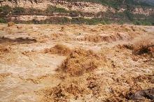汹涌澎湃的黄河,8月4日。推荐,必来!无憾!