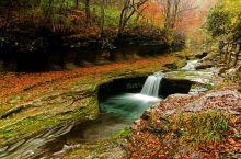 黎坪国家森林公园为国家AAAA级旅游景区。位于陕西省汉中市南郑区,2002年经国家林业局批准为国家级
