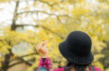 阳光正好,出发!11底,海洋乡被阳光和一篇鹅黄所包围,给冬日带来暖阳和灿烂。 周六清早从广州南站出发